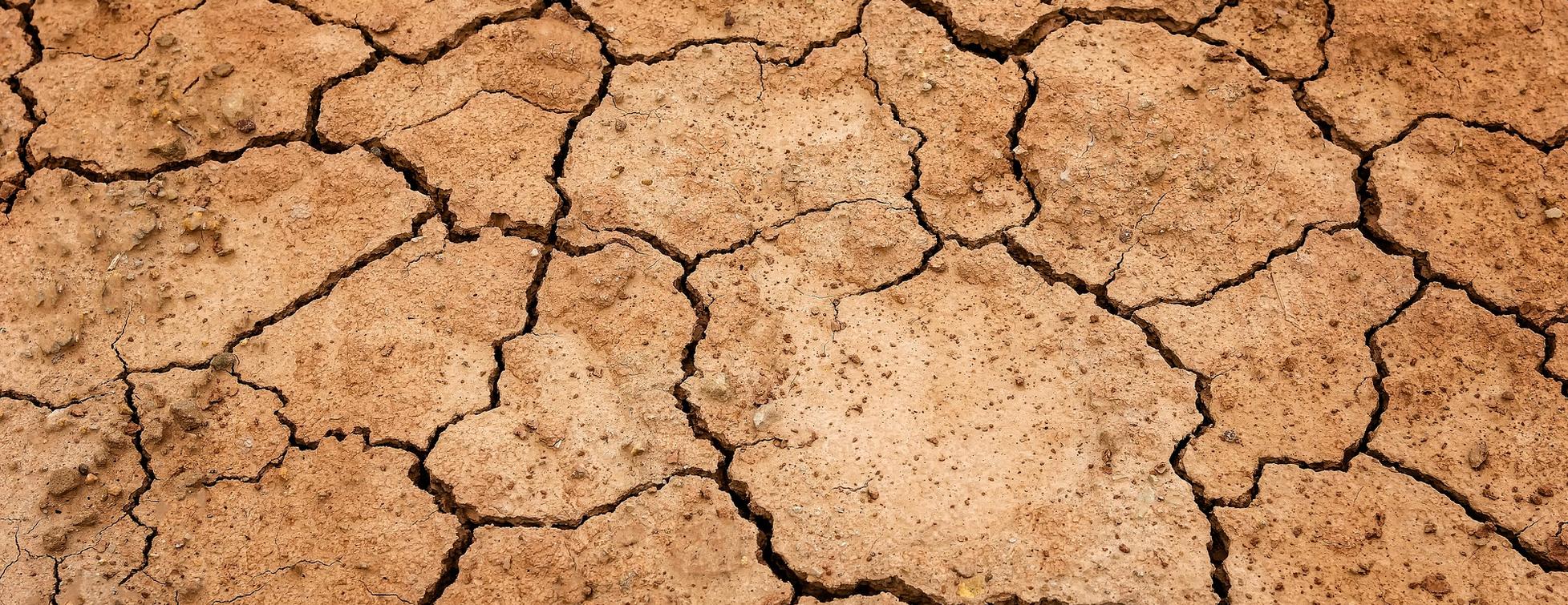 Sécheresse: catastrophe naturelle